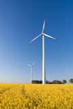Windmill  farm in the rape field Royalty Free Stock Photos