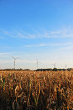 Windmill farm for renewable electric energy production Royalty Free Stock Photos