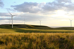 Windmill farm at sunset Royalty Free Stock Images