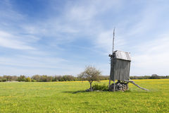 Windmill in a field in Saaremaa, Estonia. A photo of an old wooden windmill in a grass field full of yellow flowers. The photo is taken in Saaremaa which is the Royalty Free Stock Photo