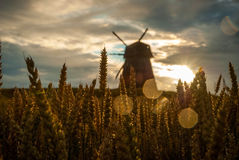 Windmill in the field in sunset Stock Images