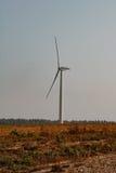 Windmill on field. White windmills on a green field of corn in late summer. / Windmill on field. / Belarus Stock Photography