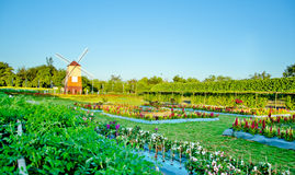 Windmill with flower garden landscape Royalty Free Stock Photo