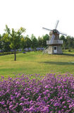 Windmill and flower garden Stock Photos