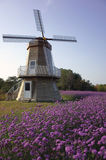 Windmill with flower land. Windmill in the garden with flower stock photo