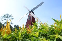Windmill in the flower`s garden royalty free stock photography