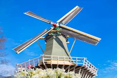 Windmill and flowers tulips royalty free stock images