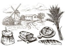 Windmill and fresh bakery products. homemade baking. bakery products. vector sketch on white Royalty Free Stock Images