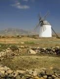 Windmill - Fuerteventura - Canary Islands royalty free stock photo