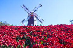 Windmill in garden Stock Image