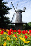 Windmill at Golden Gate Park Stock Photography