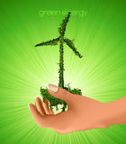 Windmill grass in his hand. Royalty Free Stock Photography