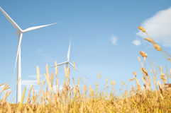 Windmill Grassland Field Hill Natural Scenics Concept Stock Photography