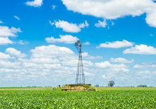 Windmill on a green field Stock Images