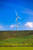 Windmill on green meadow. Spain ecologist Royalty Free Stock Images