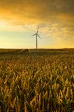 Windmill, group of aligned windmills for electric power generation alternative Stock Photography