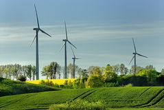 Windmill, group of aligned windmills for electric power generation alternative Royalty Free Stock Photo