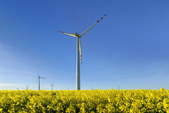 Windmill, group of aligned windmills for electric power generation alternative Stock Photos