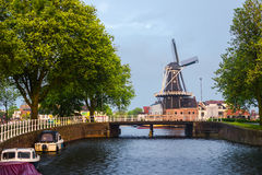 Windmill in Haarlem Stock Images