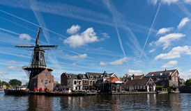 Windmill in Haarlem Royalty Free Stock Image