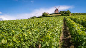 Windmill on a hill. In the Champagne region Royalty Free Stock Photos