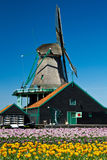 Windmill in holland Stock Images
