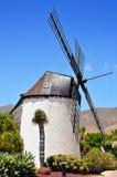 Windmill i Antigua, Fuerteventura Arkivfoto