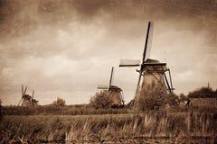 Windmill i Kinderdijk Arkivfoto