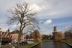 Windmill In Spring Stock Image