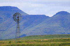 Windmill in the Karoo Stock Images