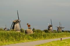 Windmill at Kinderdijk. Windmills at Kinderdijk in a sunny day - Netherland 2011 Stock Photo