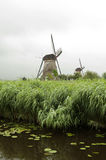 Windmill at Kinderdijk, Netherlands Royalty Free Stock Photography
