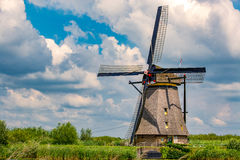 Windmill kinderdijk summer Royalty Free Stock Image