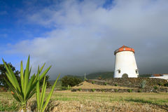 Windmill landscape from Azores Islands Royalty Free Stock Images