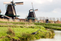 Windmill landscape in Holland Royalty Free Stock Photos