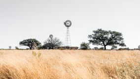 Windmill landscape in Namibia royalty free stock photography