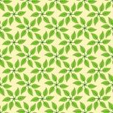 Windmill leaves pattern Stock Photo