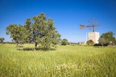Windmill in Mallorca Stock Image