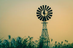 The windmill. And many Reed Royalty Free Stock Photography