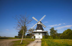 Windmill. The windmill museum in Denmark Royalty Free Stock Photography