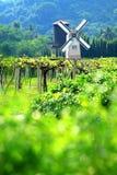 Windmill netherlands style in flower gar Stock Photography