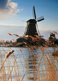 Windmill at Netherlands. Windmill at  Zaanstad, Netherlands. With grass and river in foreground Royalty Free Stock Photos