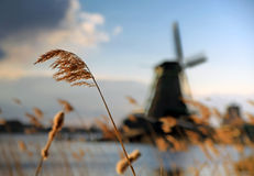 Windmill at Netherlands. Windmill at  Zaanstad, Netherlands. With grass and river in foreground and very shallow depth of field Stock Image