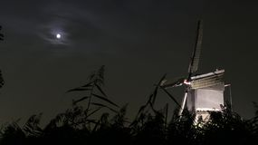 Windmill at night with moon stock photography
