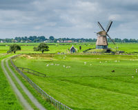 Windmill Noord-Holland. Idyllic landscape with windmill in Holland stock images