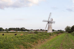 Norfolk Broads countryside uk. Windmill on the Norfolk Broads royalty free stock images