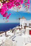 Windmill of Oia, Santorini. Windmill of Oia with flowers at sunny day close up, Santorini Royalty Free Stock Image