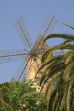 Windmill and palm trees Royalty Free Stock Photography