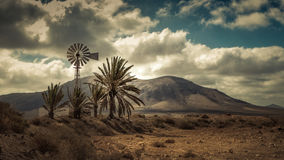 Windmill and palm trees. Windmill en palmtrees with mountains in the background Stock Photo