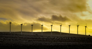 Windmill power farm at sunset Stock Photography